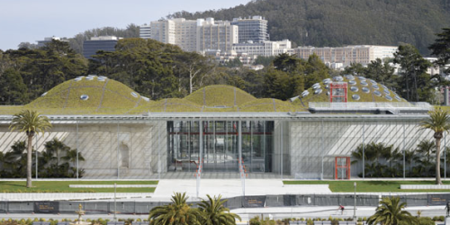 San Francisco Academy of Science